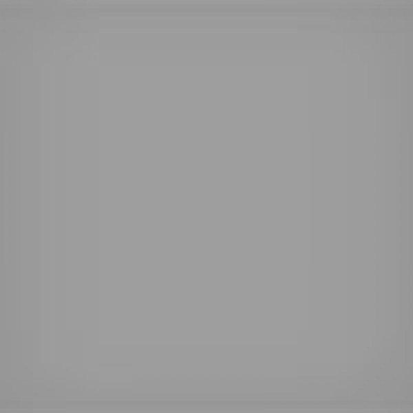LEE filtr ND 0,6 ProGlassND06 100x100