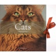CATS (Box set)
