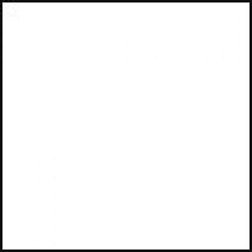 FOMEI textilní pozadí 2,7x2,9m bílé