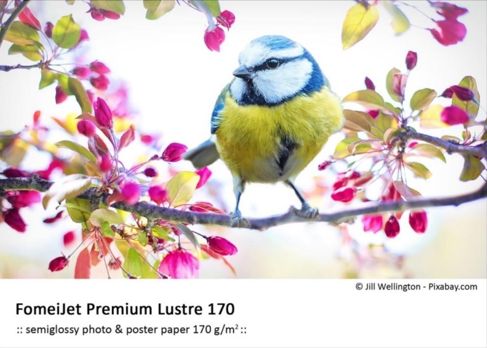 FOMEI FomeiJet Premium Lustre A4/20+5 170 (Polomat)