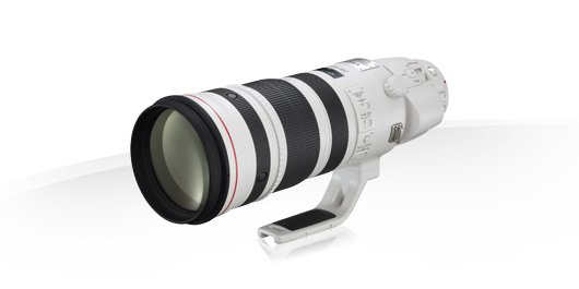 CANON EF 200-400 mm f/4L IS USM (s telekonvertorem 1,4x)