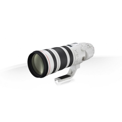 CANON EF 200-400 mm f/4L IS USM (s telekonvertorem 1,4x)
